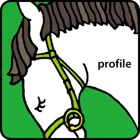 index_icon_profile_off