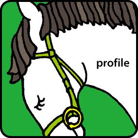 index_icon_profile_off